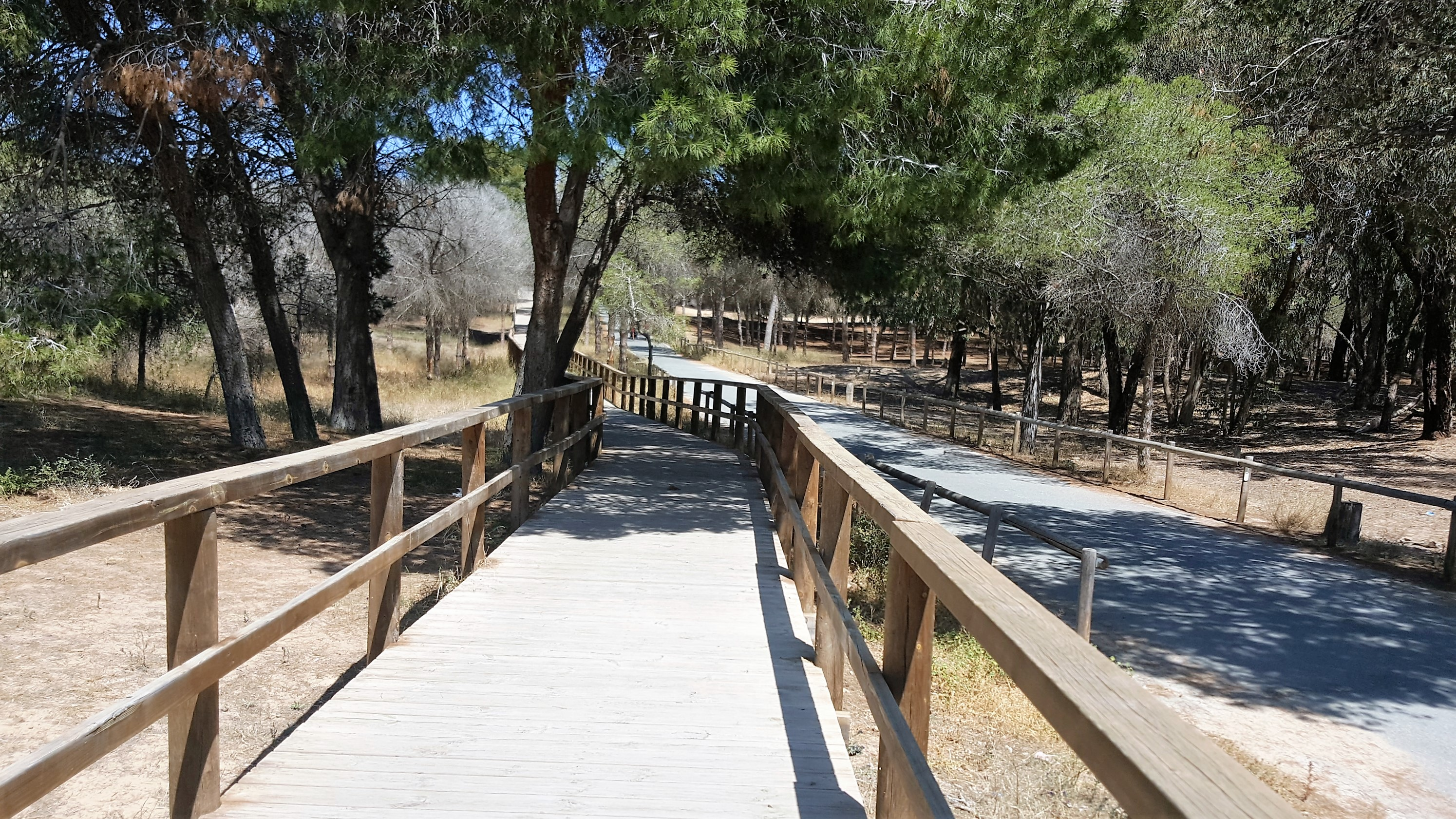 Prachtige houten pad naar het strand